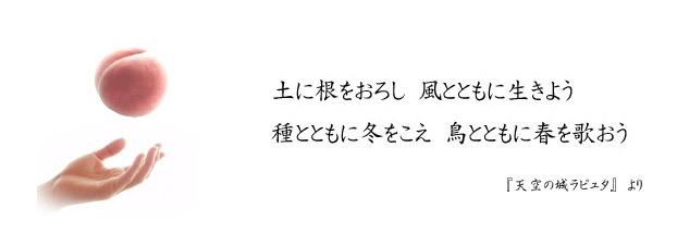 ブログタイトル画像.jpg